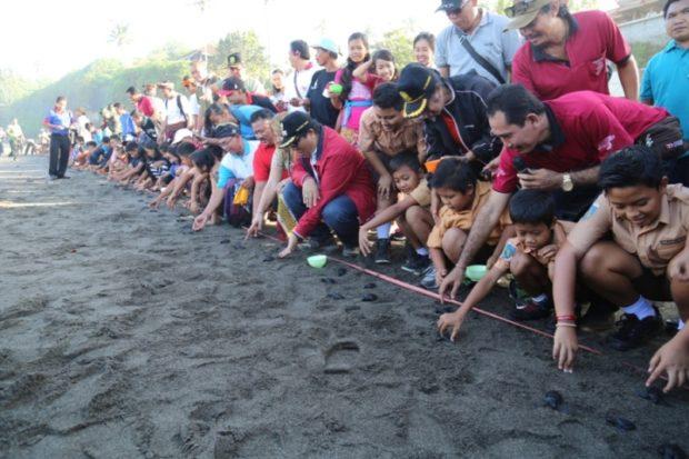 Wakil Bupati Tabanan Komang Sanjaya Lepas 150 Ekor Anak Penyuh