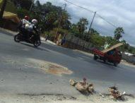 Jalan Timor Raya Renggut Dua Nyawa