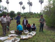 Digagalkan, Penyelundupan Ratusan Ekor Burung Dilindungi ke Pulau Bali