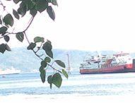 Ferry Munic III Kandas di Gilimanuk