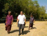 Geram Reklamasi, Dewan Perintahkan Pemulihan Hutan Bakau yang Diurug