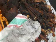 Tulang Belulang Diduga Korban G30S/PKI-Ditemukan di Pantai Yehembang