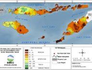 Tiga Wilayah  NTT Terancam  Kekeringan Panjang