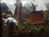 Ditimpa Pohon, Rumah Jasmita Rusak Parah