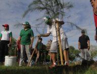 Antisipasi Abrasi Pantai Tuwed, Warga dan Bupati Jembrana Tanam Cemara Laut