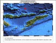 Gempa 6,4 SR Guncang Flores Timur, Tak Berpotensi Tsunami