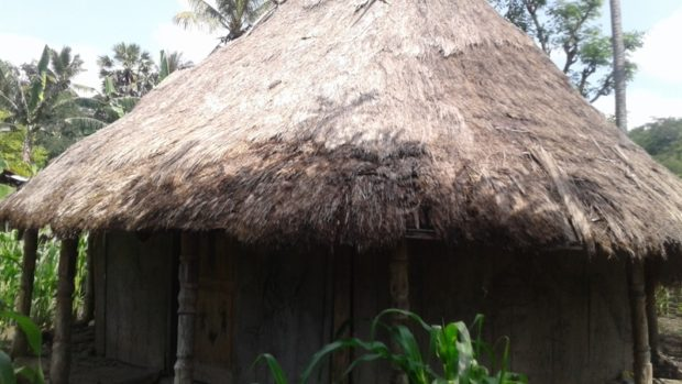 Ritual Tetesaan Darah Hewan Saat Musim Panen – Tradisi Warga di Tapal Batas