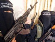 Diduga Hendak Gabung ISIS, Tiga WNI Dideportase dari Turki