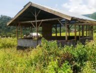 Penghuni Translok Odang Terintimidasi, 60 Rumah Mubasir