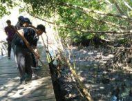 Peringati Hari Bumi, Ratusan Siswa SMA/SMK Bersih-bersih Sampah di Hutan Mangrove