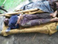 Tertimpa Pohon Kelapa, Bedesa Adat Bangkiang Jaran Meninggal