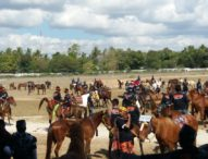 Ayo ke Sumba, Parade 1001 Kuda Sandelwood Dimulai