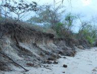 Pantai Mulawato Tergerus Abrasi