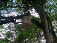 Bertepatan Hari Suci Nyepi dan Saraswati- Dishub Denpasar Sesuaikan Jam Pemadaman 17.600 Titik LPJU