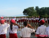 Rayakan Hardiknas Di Pantai Riangsunge,SD Inpres Ritaebang dan LLC Tanam Mangrove