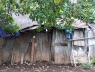 Di Larantuka, Selain Rumah, Pondok pun Disewakan untuk Urusan Esek-esek