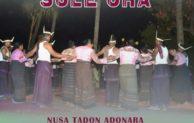Ragam Budaya di  Festival Nusa Tadon
