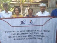 Dosen ITB STIKOM Bali Manfaatkan Teknologi Vacuum Frying, Tingkatkan Nilai Ekonomis Buah Pisang
