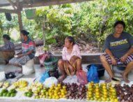 Di Tobo Lara Hokeng, Pedagang Buah Rajut Kebersamaan