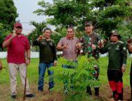 DLH Flotim Dandani Taman Felix Fernandez Larantuka