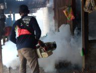 Hentikan Penyebaran DBD di Desa Kalelu, Tim Dinkes Flotim Lakukan Fogging