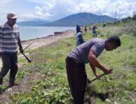 Staf Kancam Solor Barat Lakukan Penghijauan Pada Hamparan Sabana